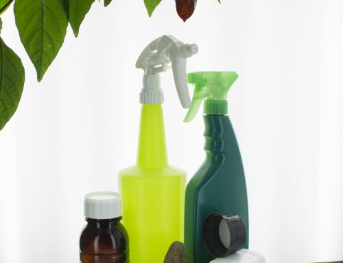 Advantages of Trigger Sprayers in the Garden
